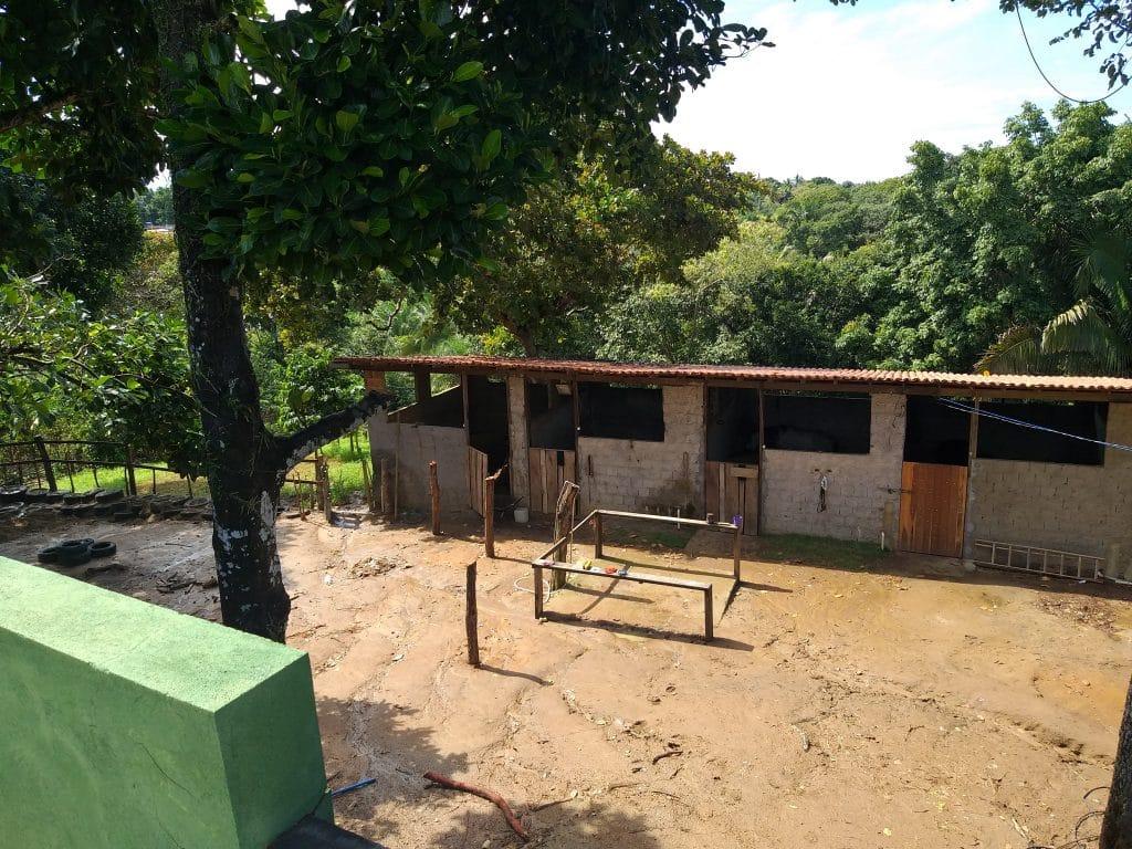 Área de treinamento do Haras Divinha