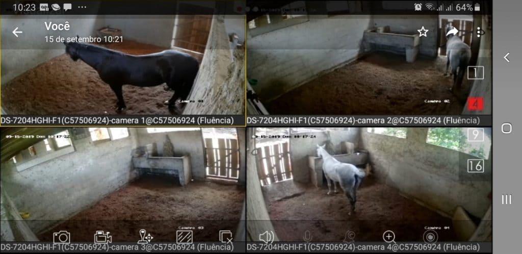 Video monitoramento das baias do Haras Divinha