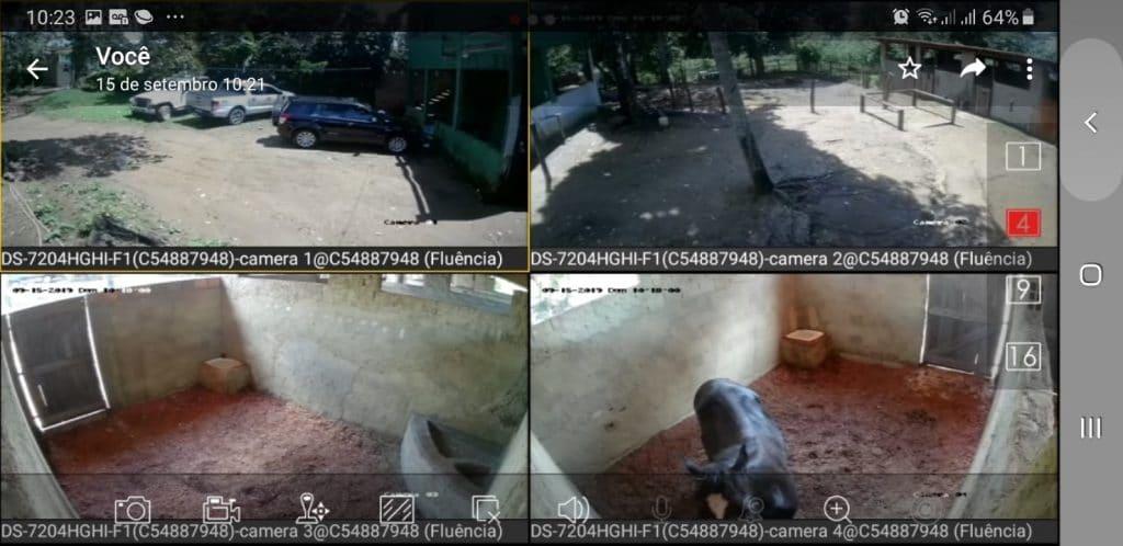 Video monitoramento do Haras Divinha